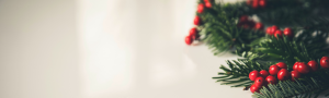 Merry Christmas from Crystal Technologies